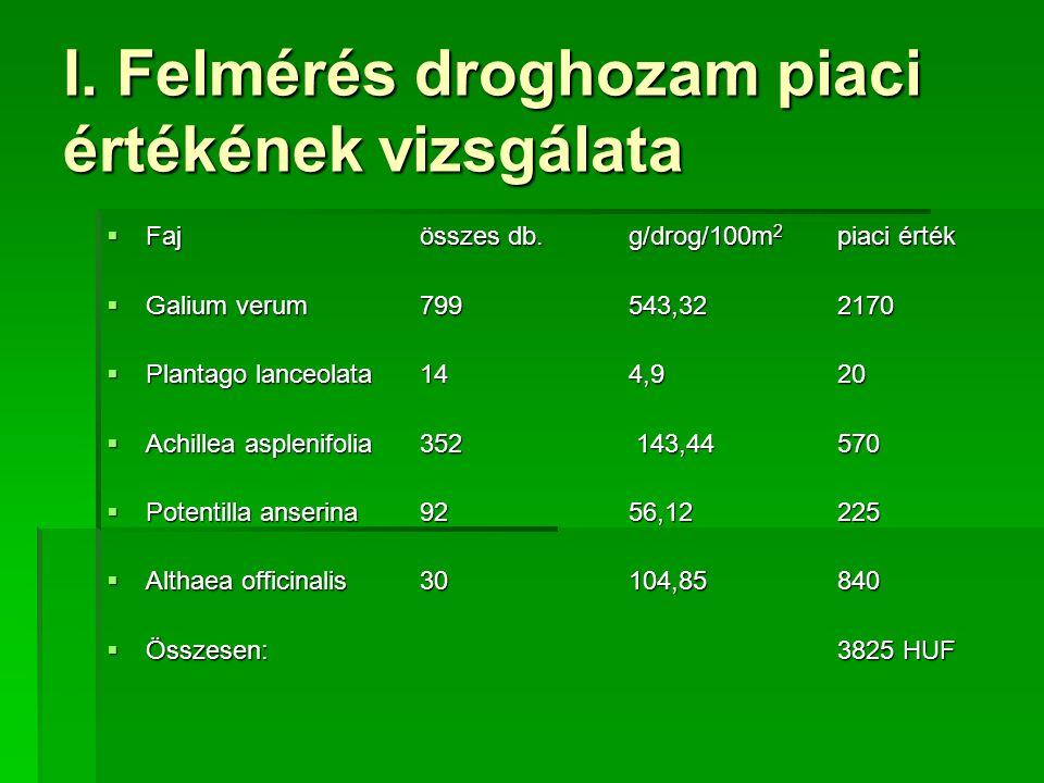 I. Felmérés droghozam piaci értékének vizsgálata  Fajösszes db.g/drog/100m 2 piaci érték  Galium verum799543,322170  Plantago lanceolata144,920  A