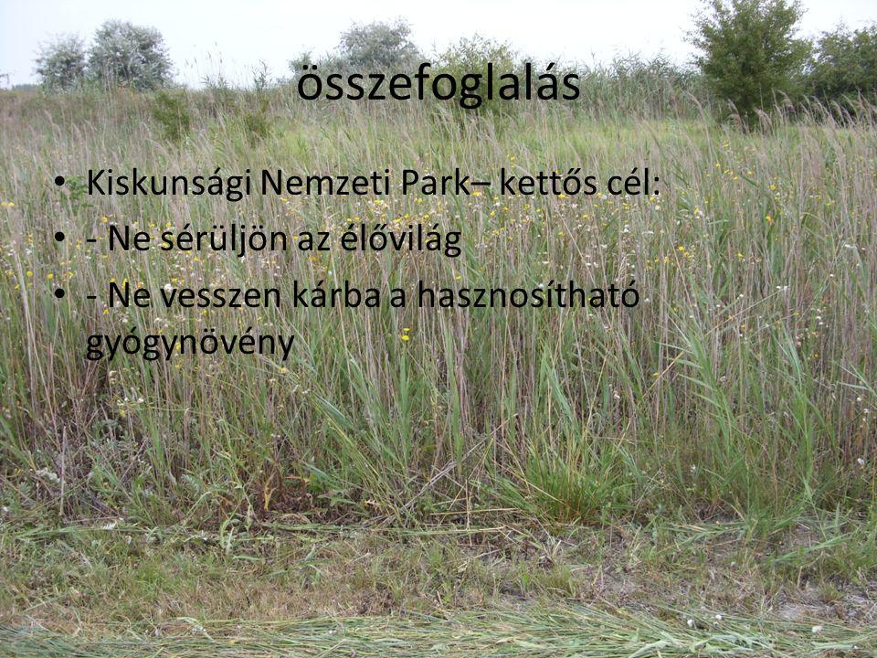 összefoglalás • Kiskunsági Nemzeti Park– kettős cél: • - Ne sérüljön az élővilág • - Ne vesszen kárba a hasznosítható gyógynövény