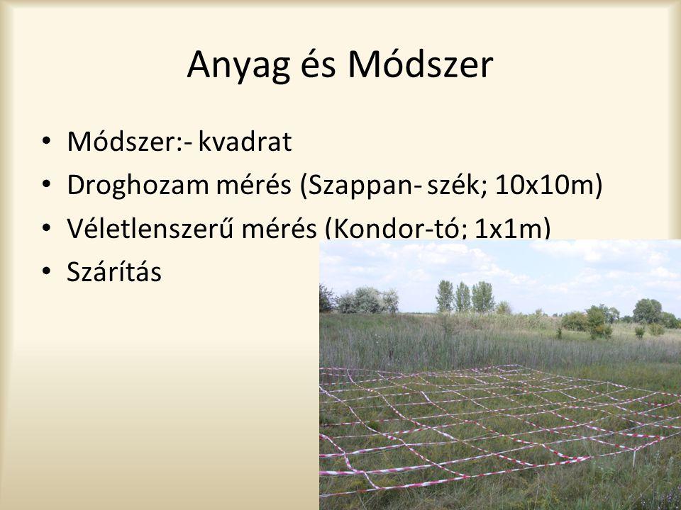Anyag és Módszer • Módszer:- kvadrat • Droghozam mérés (Szappan- szék; 10x10m) • Véletlenszerű mérés (Kondor-tó; 1x1m) • Szárítás