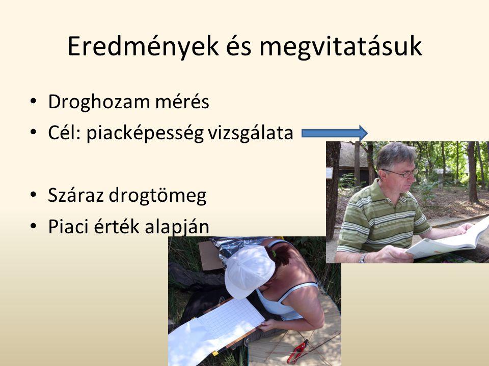 Eredmények és megvitatásuk • Droghozam mérés • Cél: piacképesség vizsgálata • Száraz drogtömeg • Piaci érték alapján