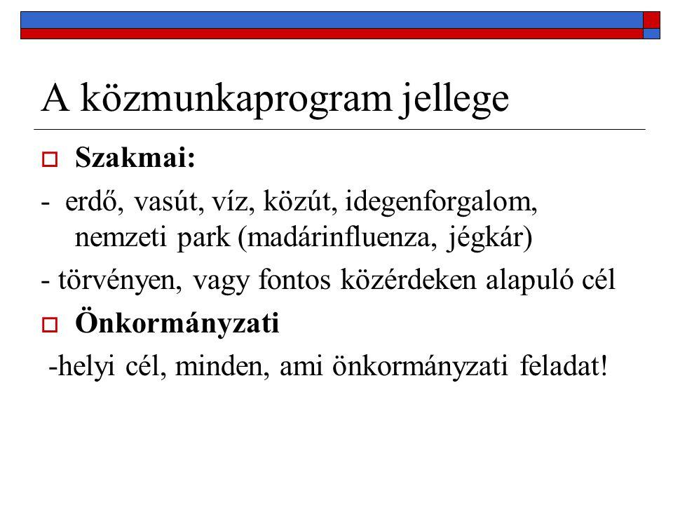 A közmunkaprogram jellege  Szakmai: - erdő, vasút, víz, közút, idegenforgalom, nemzeti park (madárinfluenza, jégkár) - törvényen, vagy fontos közérdeken alapuló cél  Önkormányzati -helyi cél, minden, ami önkormányzati feladat!