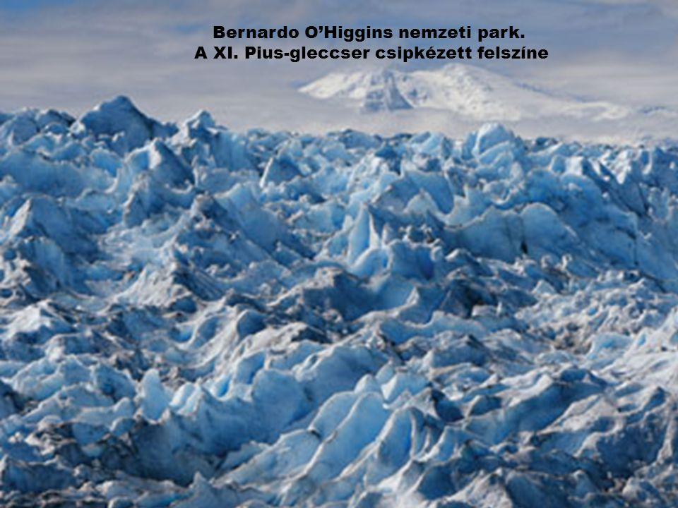 Bernardo O'Higgins nemzeti park. A XI. Pius-gleccser csipkézett felszíne