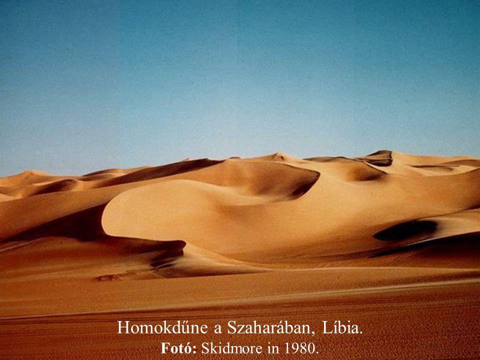 Homokdűne a Szaharában, Líbia. Fotó: Skidmore in 1980.