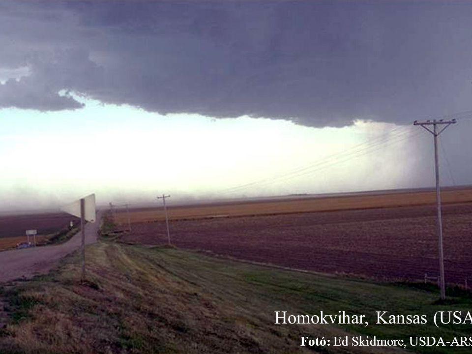 Homokvihar, Kansas (USA) Fotó: Ed Skidmore, USDA-ARS.