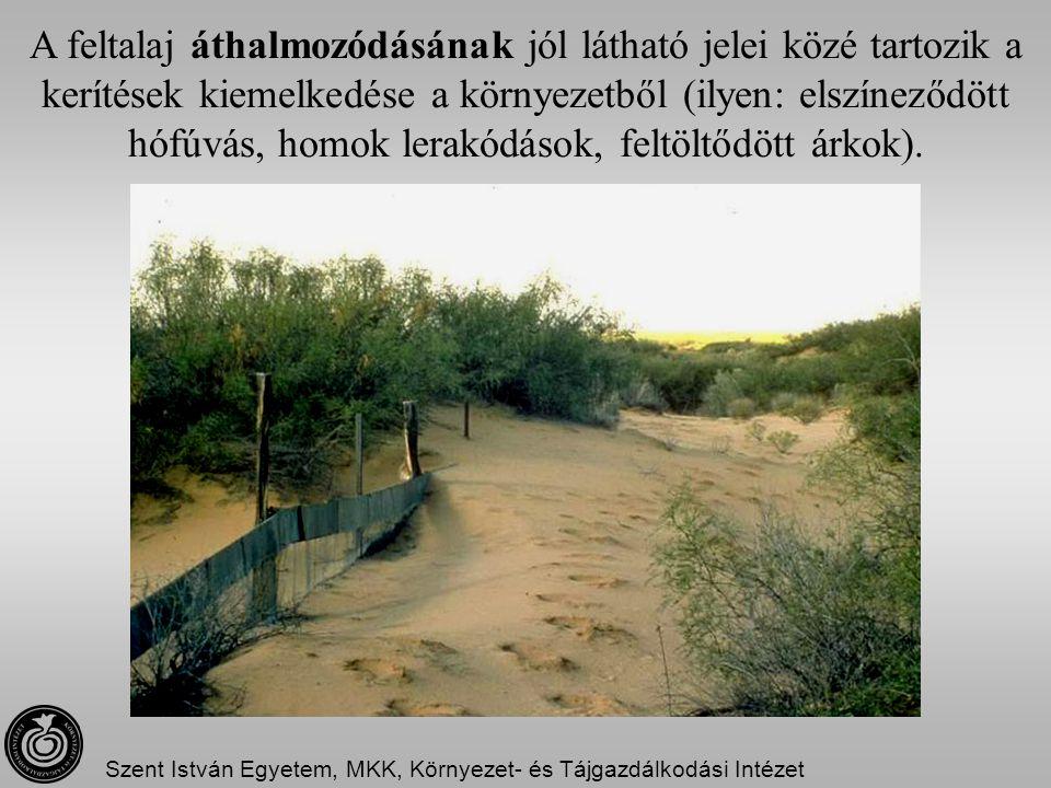 A feltalaj áthalmozódásának jól látható jelei közé tartozik a kerítések kiemelkedése a környezetből (ilyen: elszíneződött hófúvás, homok lerakódások,