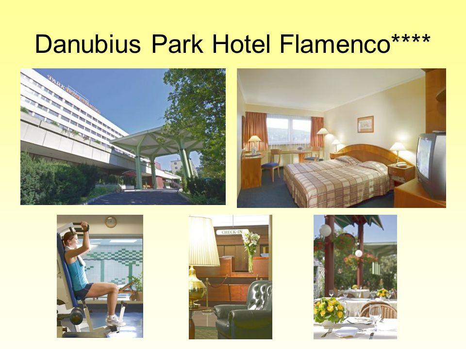 A rendszerváltás után felgyorsult a szállodaipar fejlődése Megjelentek a magyar piacon: •Marriott Hotels Corporation (amerikai) •Accor Hotels (francia) •Corinthia Hotels International (máltai)