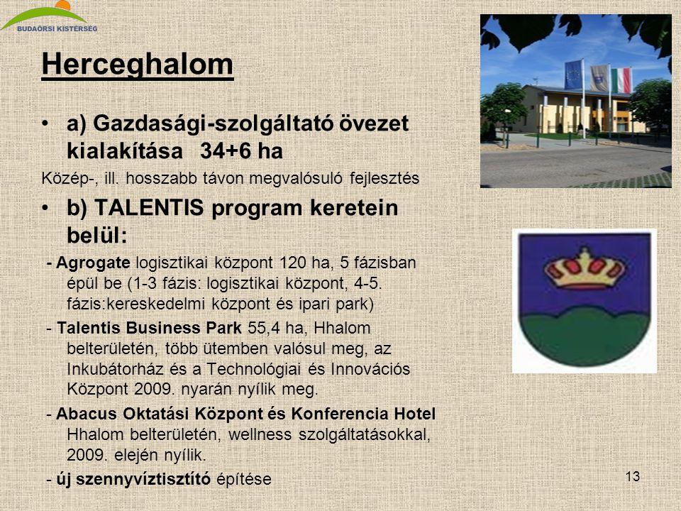13 Herceghalom •a) Gazdasági-szolgáltató övezet kialakítása 34+6 ha Közép-, ill. hosszabb távon megvalósuló fejlesztés •b) TALENTIS program keretein b