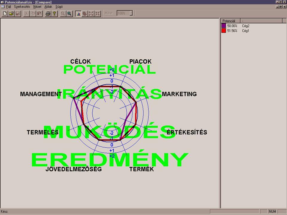 Potenciálanalízis Összehasonlítás n Több vállalat vagy település összehasonlítása n Az összehasonlítás grafikus megjelenítése