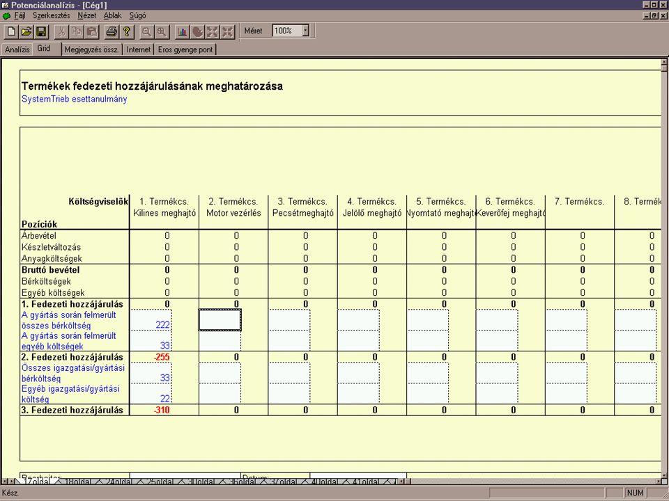 Potenciálanalízis Táblázat n Szempontokhoz kapcsolódhat n Számszerű értékelés n Automatikus újraszámolás n Nyomtatás