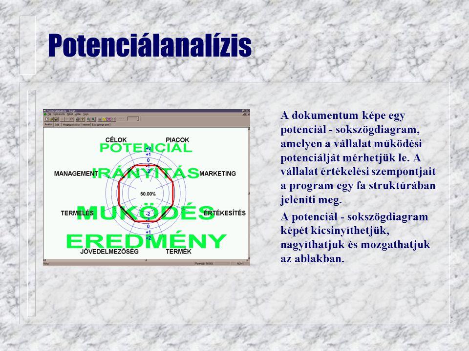 Potenciálanalízis n A dokumentum képe egy potenciál - sokszögdiagram, amelyen a vállalat működési potenciálját mérhetjük le.