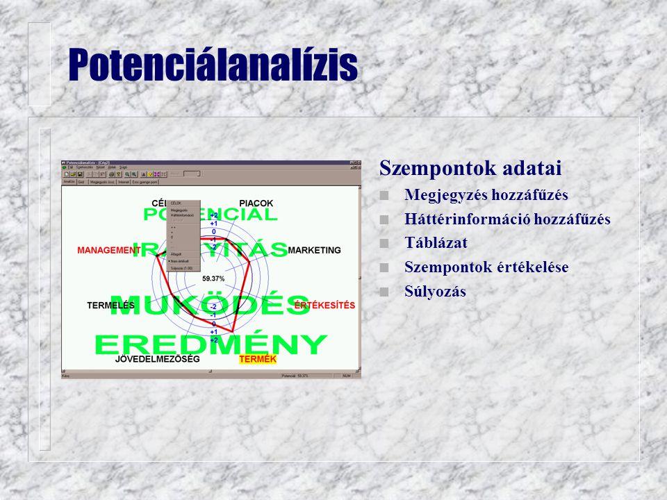 Potenciálanalízis Szempontok adatai n Megjegyzés hozzáfűzés n Háttérinformáció hozzáfűzés n Táblázat n Szempontok értékelése n Súlyozás