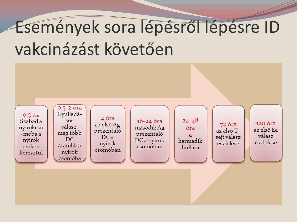 Események sora lépésről lépésre ID vakcinázást követően 0.5 óra Szabad a nyirokcso -móba a nyirok ereken keresztül 0.5-2 óra Gyulladá- sos válasz, még több DC áramlik a nyirok csomóba 4 óra az első Ag prezentáló DC a nyirok csomóban 16-24 óra második Ag prezentáló DC a nyirok csomóban 24-48 óra a harmadik hullám 72 óra az első T- sejt válasz észlelése 120 óra az első Ea válasz észlelése