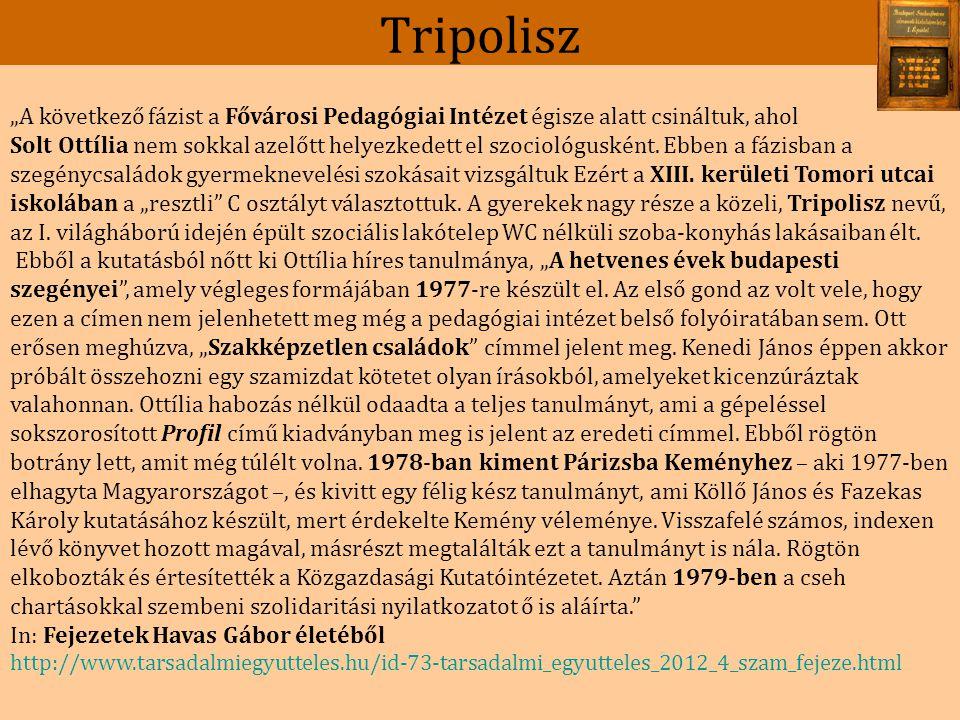 Tripolisz Solt Ottilia: Egy budapesti kerület alacsony jövedelmű munkáscsaládjai, Budapesti Nevelő, 1975.3.