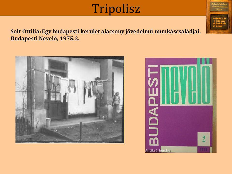 Tripolisz Szakképzetlen családok.Egy általános iskolai osztály szociológiai vizsgálata.