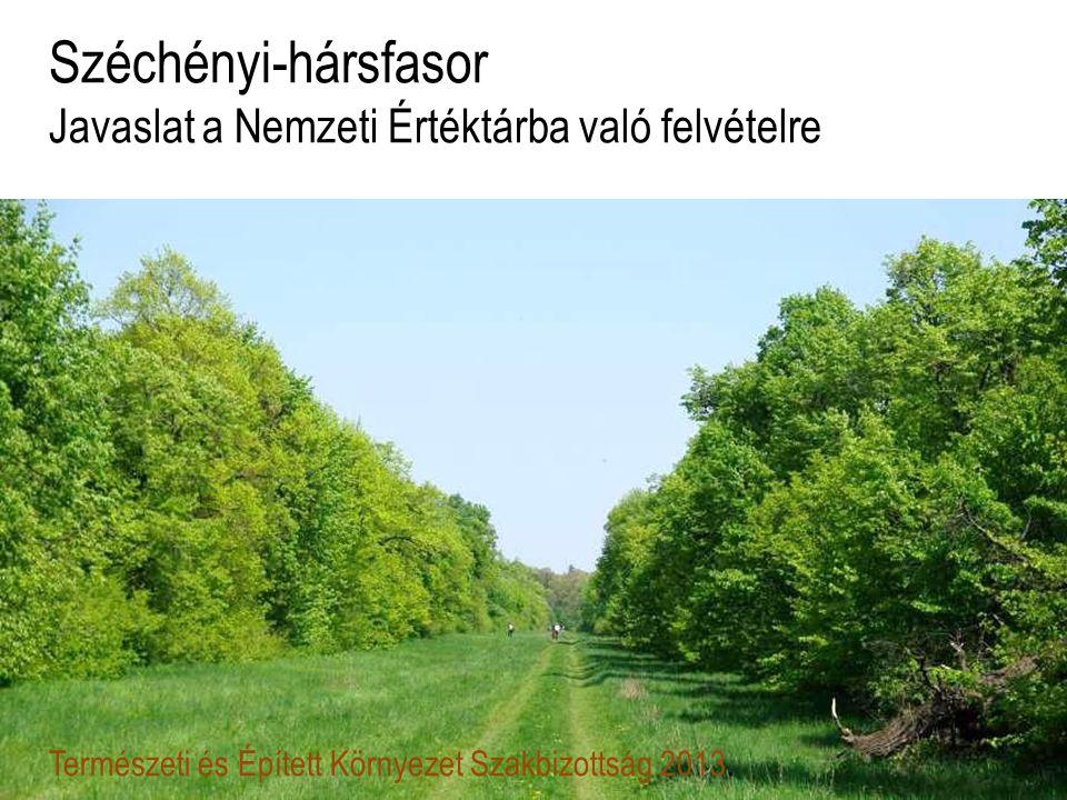 Széchényi-hársfasor Javaslat a Nemzeti Értéktárba való felvételre Természeti és Épített Környezet Szakbizottság 2013.