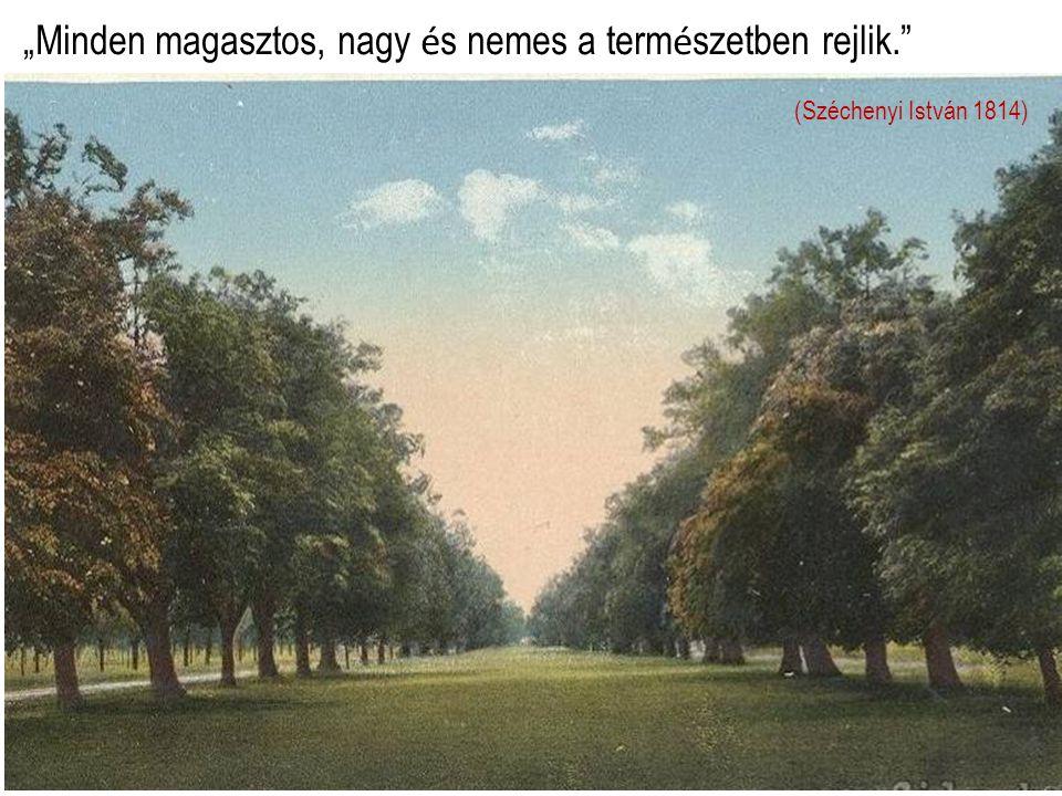 """""""Minden magasztos, nagy é s nemes a term é szetben rejlik. (Széchenyi István 1814)"""
