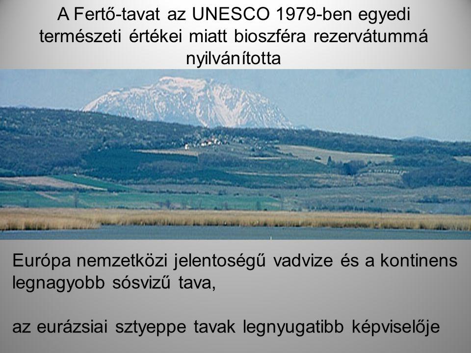 A Fertő-tavat az UNESCO 1979-ben egyedi természeti értékei miatt bioszféra rezervátummá nyilvánította Európa nemzetközi jelentoségű vadvize és a konti