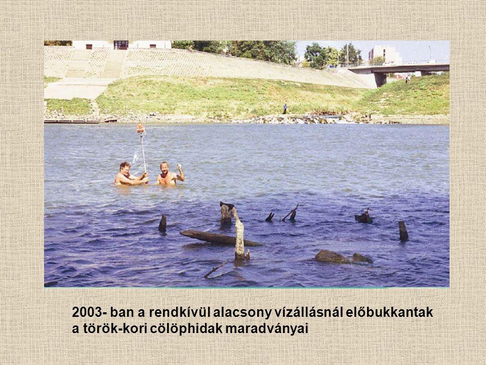 2003- ban a rendkívül alacsony vízállásnál előbukkantak a török-kori cölöphidak maradványai