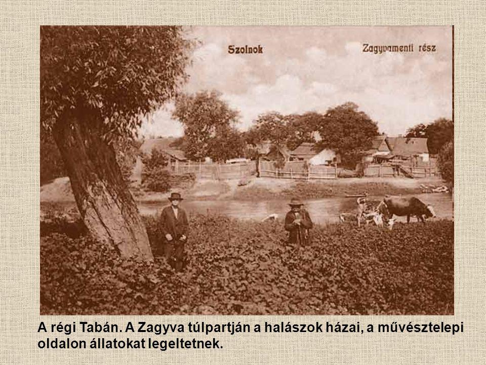 A régi Tabán. A Zagyva túlpartján a halászok házai, a művésztelepi oldalon állatokat legeltetnek.