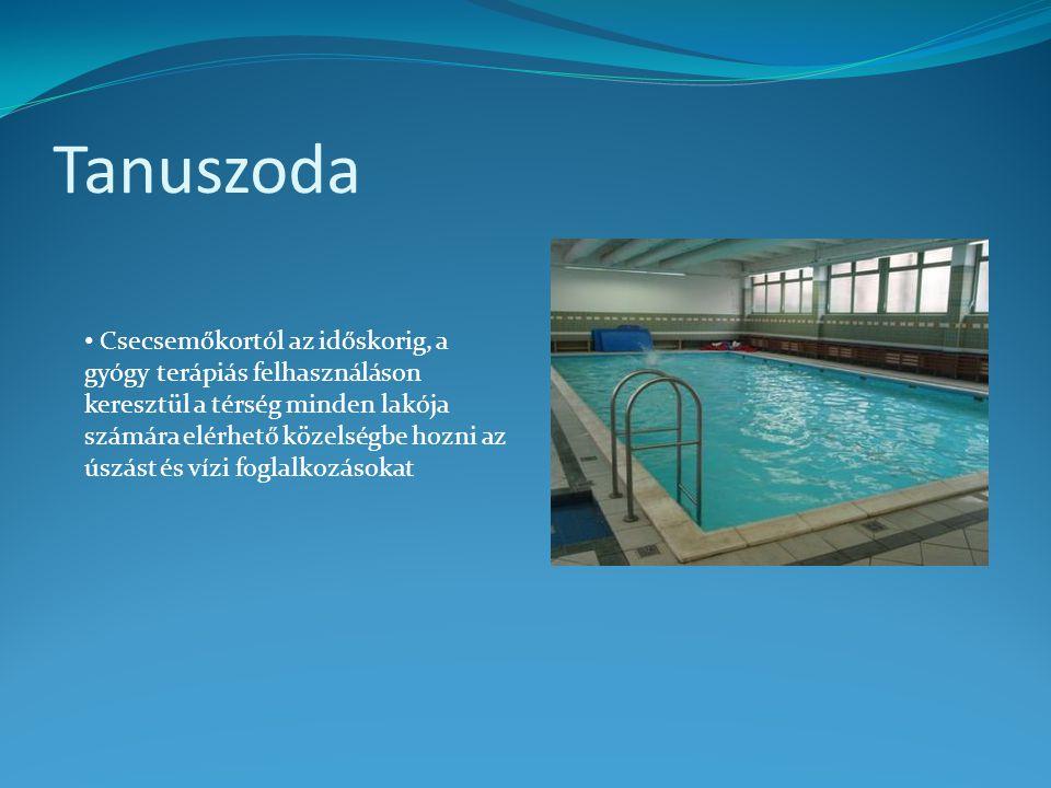 Tanuszoda • Csecsemőkortól az időskorig, a gyógy terápiás felhasználáson keresztül a térség minden lakója számára elérhető közelségbe hozni az úszást