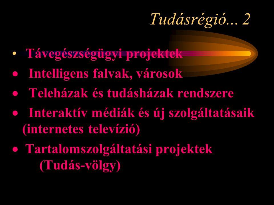 Tudásrégió... 2 • Távegészségügyi projektek  Intelligens falvak, városok  Teleházak és tudásházak rendszere  Interaktív médiák és új szolgáltatásai