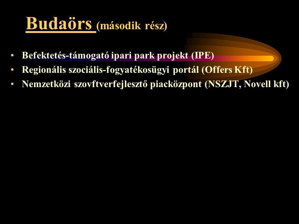 Budaörs (második rész) •Befektetés-támogató ipari park projekt (IPE) •Regionális szociális-fogyatékosügyi portál (Offers Kft) •Nemzetközi szovftverfej