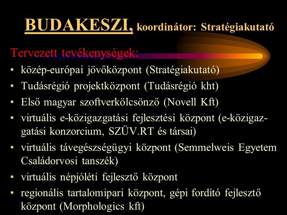 BUDAKESZI, koordinátor: Stratégiakutató Tervezett tevékenységek: •közép-európai jövőközpont (Stratégiakutató) •Tudásrégió projektközpont (Tudásrégió k