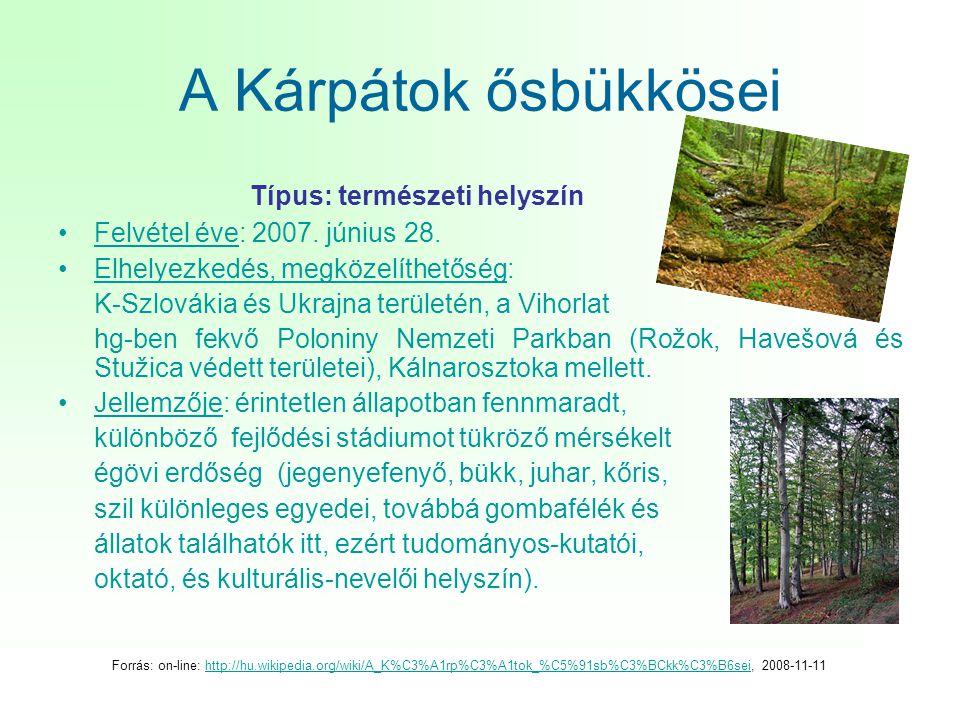 A Kárpátok ősbükkösei Típus: természeti helyszín •Felvétel éve: 2007. június 28. •Elhelyezkedés, megközelíthetőség: K-Szlovákia és Ukrajna területén,