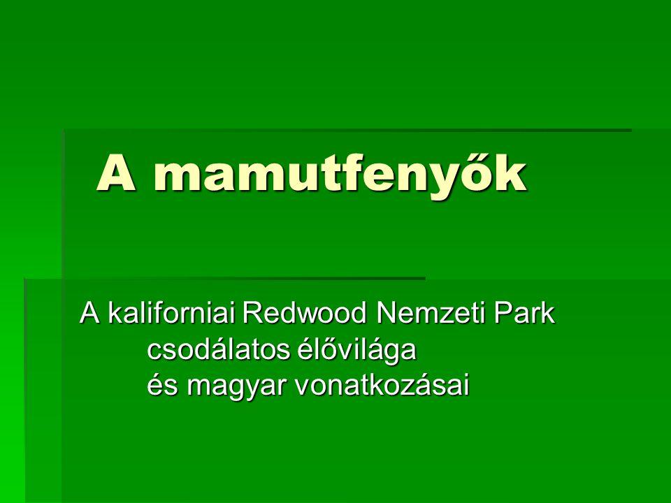 A Nemzeti Park története  San Francisco-tól kb.