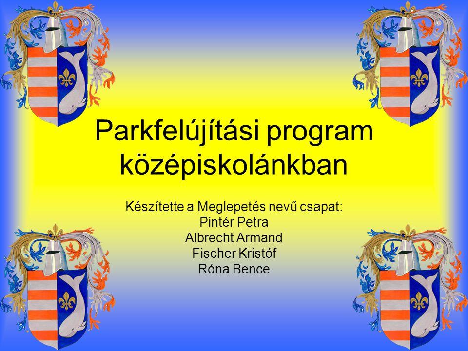 Parkfelújítási program középiskolánkban Készítette a Meglepetés nevű csapat: Pintér Petra Albrecht Armand Fischer Kristóf Róna Bence