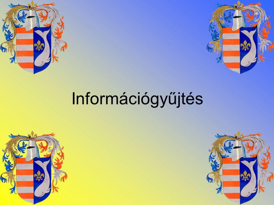 •Törvényi háttér •Interjú •Kérdőív Az információgyűjtés állomásai