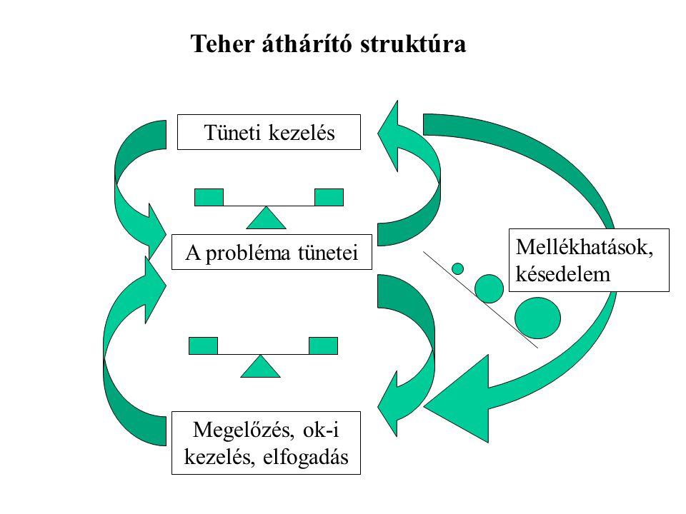 A probléma tünetei Tüneti kezelés Megelőzés, ok-i kezelés, elfogadás Mellékhatások, késedelem Teher áthárító struktúra