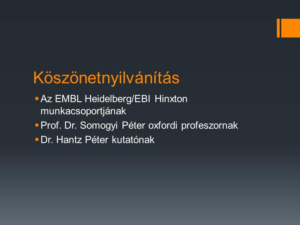 Köszönetnyilvánítás  Az EMBL Heidelberg/EBI Hinxton munkacsoportjának  Prof.