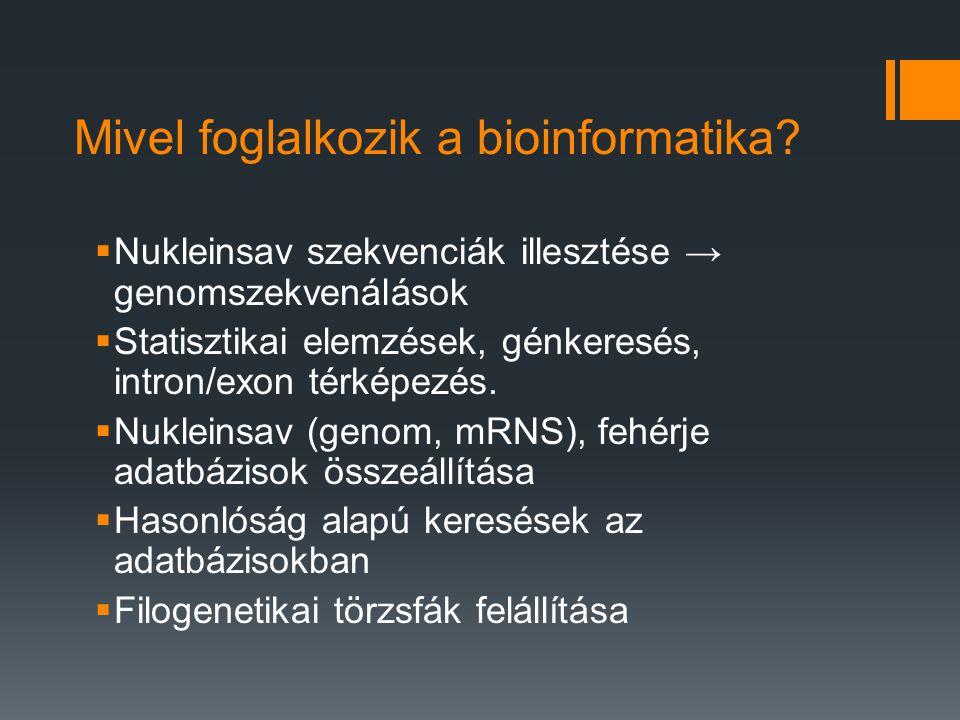 Mivel foglalkozik a bioinformatika.