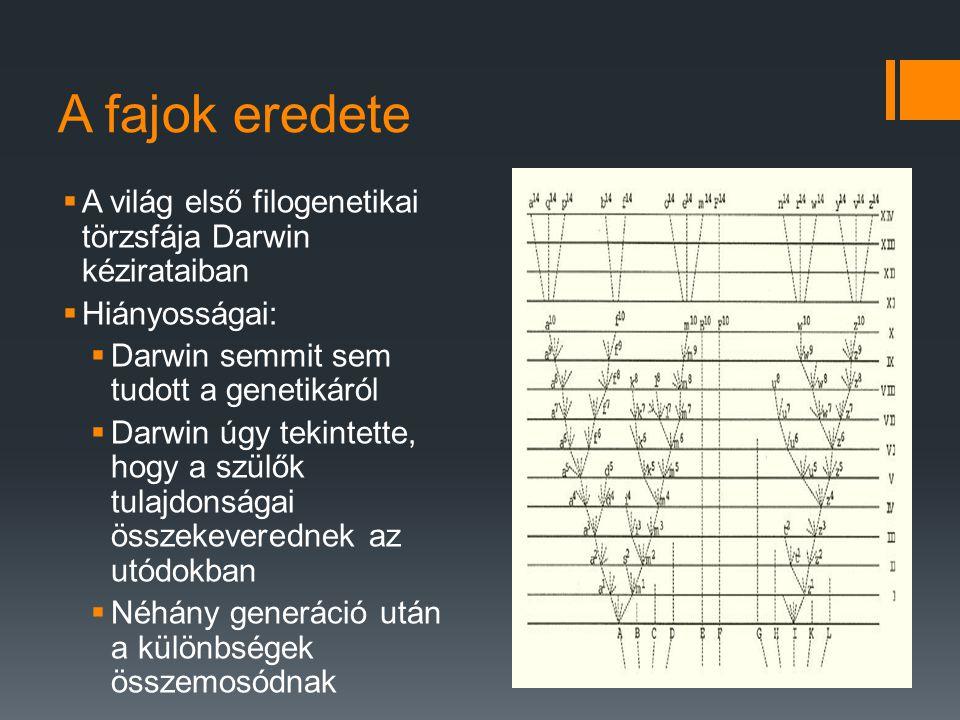 A fajok eredete  A világ első filogenetikai törzsfája Darwin kézirataiban  Hiányosságai:  Darwin semmit sem tudott a genetikáról  Darwin úgy tekintette, hogy a szülők tulajdonságai összekeverednek az utódokban  Néhány generáció után a különbségek összemosódnak