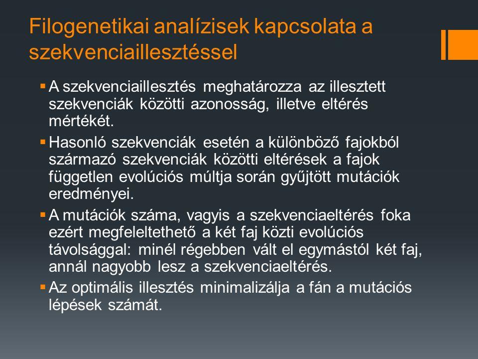 A www.geneious.org adatbázis használatawww.geneious.org