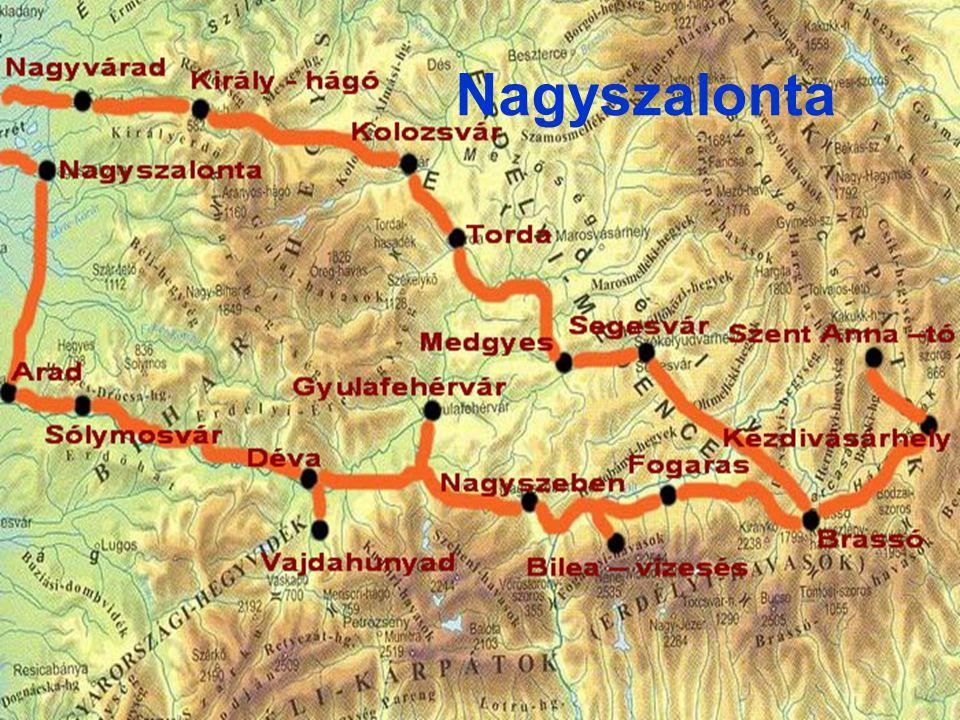 Kisebb információk •Közigazgatás •Ország: Románia •Történelmi régió: Partium •Megye: Bihar •Rang: megyei jogú város •Polgármester: Török László •Népesség •Népesség: 18 074 fő (2002) +/- •Magyar lakosság: 10 335 •Földrajzi adatok •Terület166,44 km² •IdőzónaEET, UTC+2 Nagyszalonta címere:
