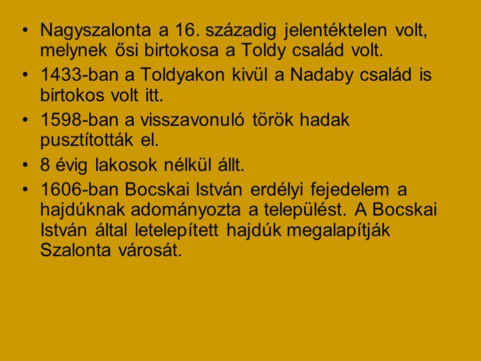 •Nagyszalonta a 16. századig jelentéktelen volt, melynek ősi birtokosa a Toldy család volt. •1433-ban a Toldyakon kivül a Nadaby család is birtokos vo