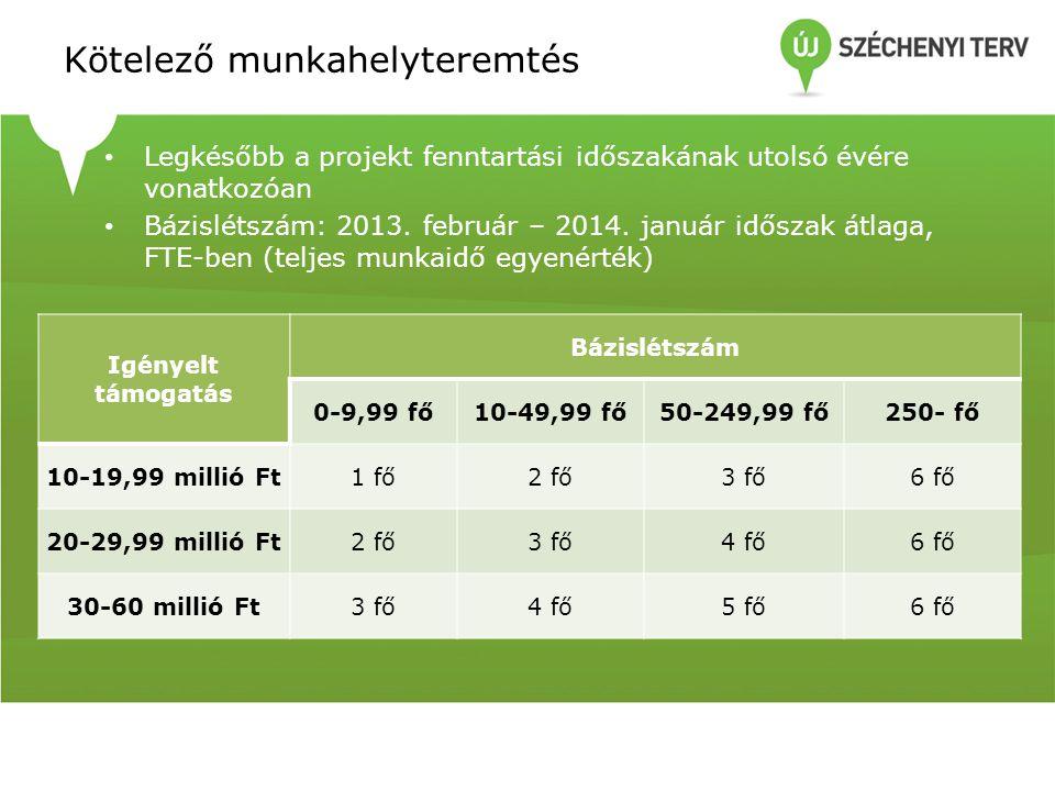 Kötelező munkahelyteremtés • Legkésőbb a projekt fenntartási időszakának utolsó évére vonatkozóan • Bázislétszám: 2013. február – 2014. január időszak