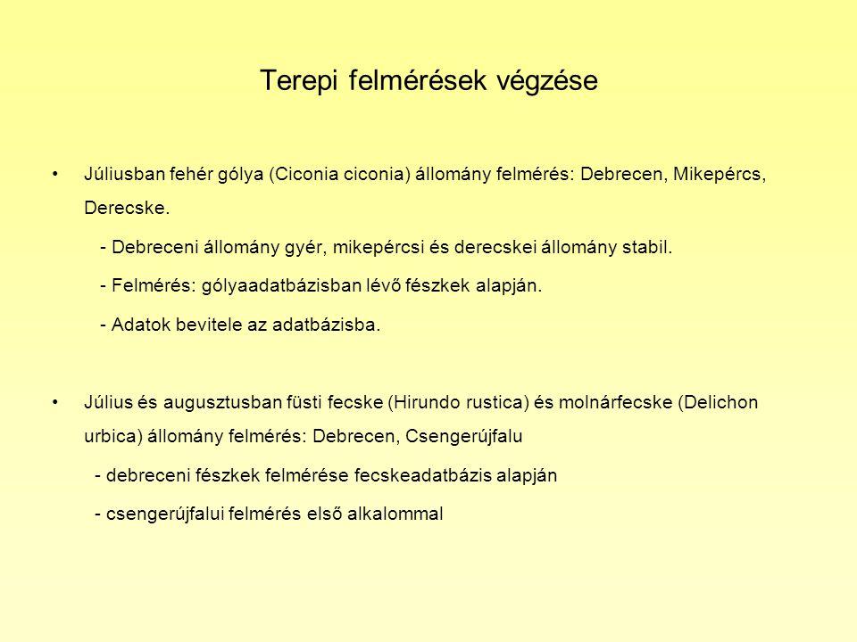 Terepi felmérések végzése •Júliusban fehér gólya (Ciconia ciconia) állomány felmérés: Debrecen, Mikepércs, Derecske.