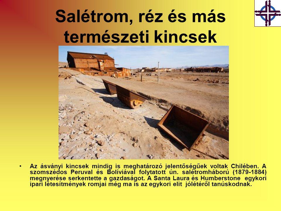 Salétrom, réz és más természeti kincsek •Az ásványi kincsek mindig is meghatározó jelentőségűek voltak Chilében. A szomszédos Peruval és Bolíviával fo