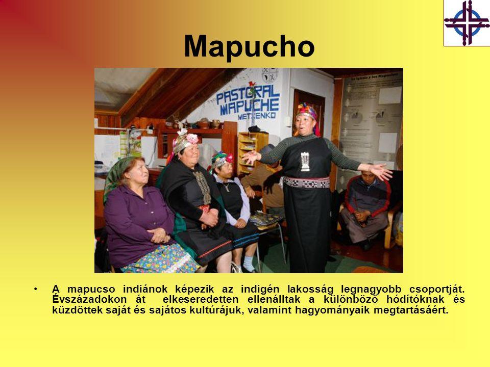 Mapucho •A mapucso indiánok képezik az indigén lakosság legnagyobb csoportját. Évszázadokon át elkeseredetten ellenálltak a különböző hódítóknak és kü