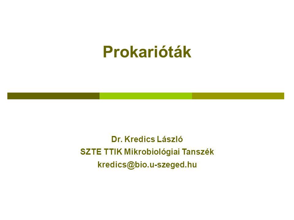 Prokarióták Dr. Kredics László SZTE TTIK Mikrobiológiai Tanszék kredics@bio.u-szeged.hu
