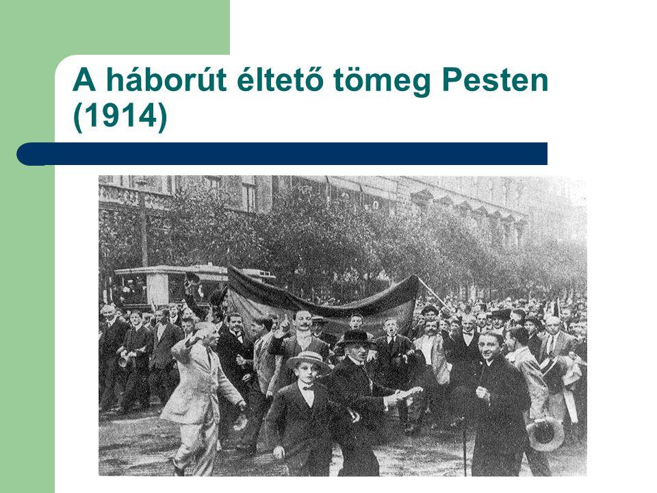 A háborút éltető tömeg Pesten (1914)