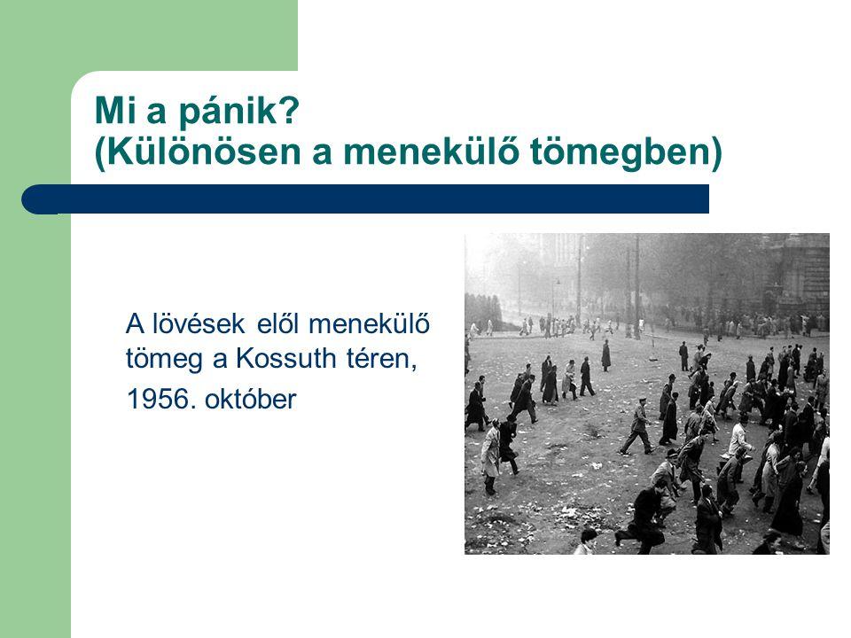 Mi a pánik? (Különösen a menekülő tömegben) A lövések elől menekülő tömeg a Kossuth téren, 1956. október