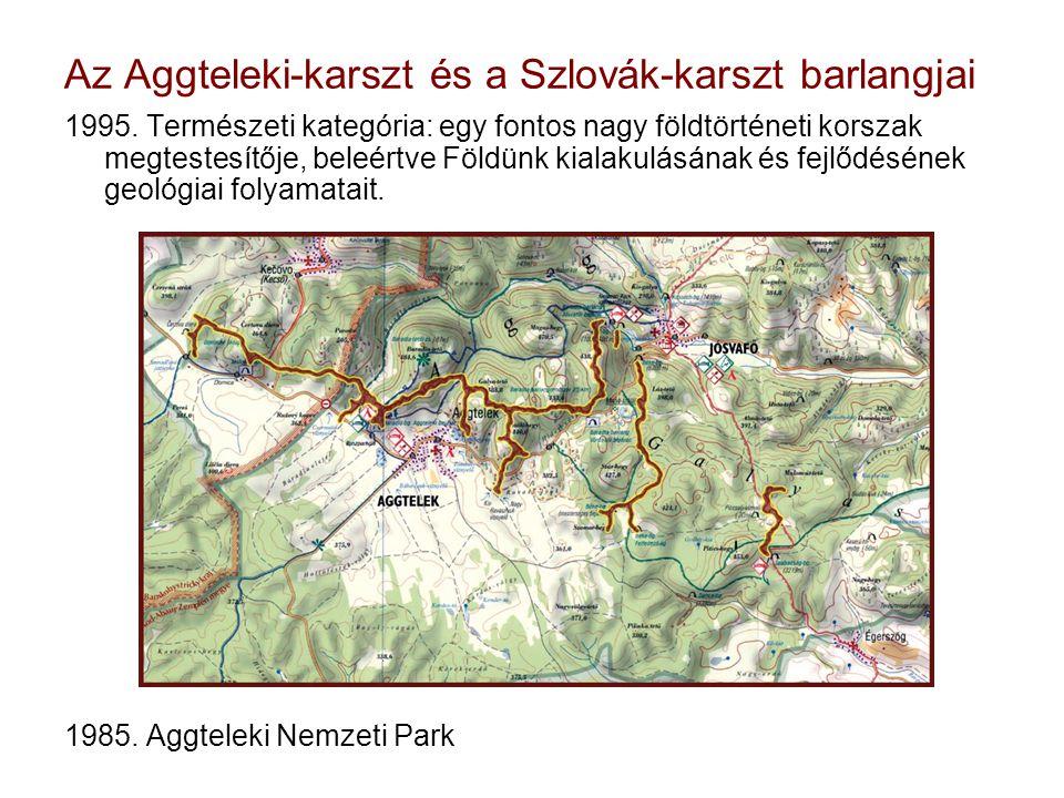 Az Aggteleki-karszt és a Szlovák-karszt barlangjai 1995.