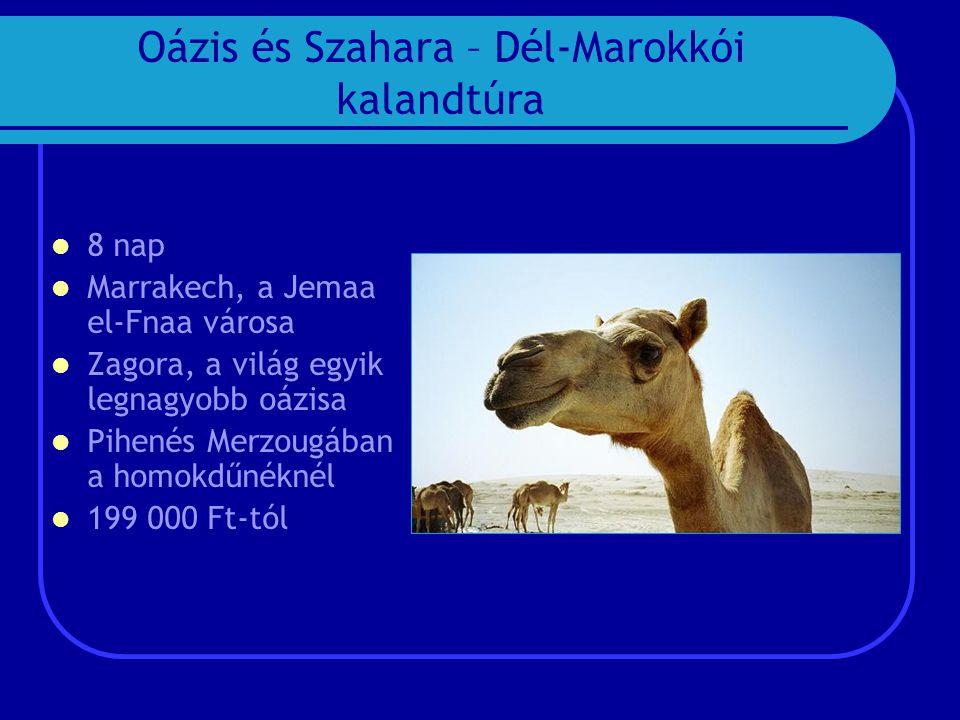 Oázis és Szahara – Dél-Marokkói kalandtúra  8 nap  Marrakech, a Jemaa el-Fnaa városa  Zagora, a világ egyik legnagyobb oázisa  Pihenés Merzougában a homokdűnéknél  199 000 Ft-tól