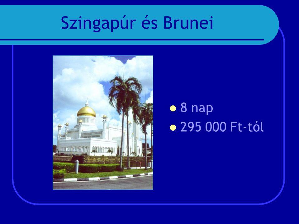 Szingapúr és Brunei  8 nap  295 000 Ft-tól