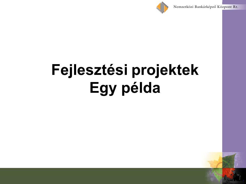 7 Fejlesztési projektek Egy példa