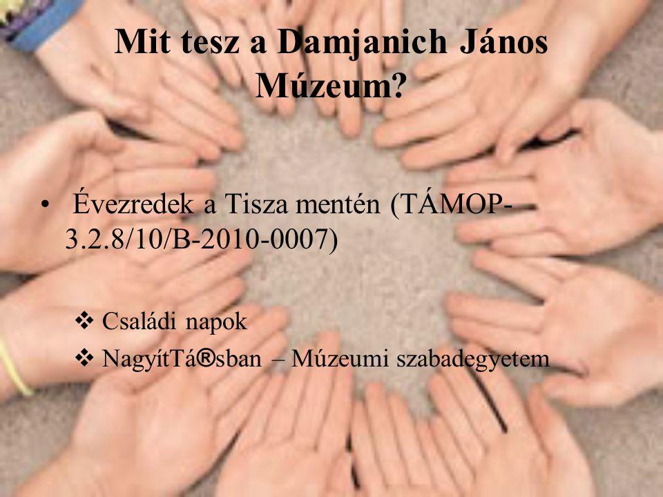 Mit tesz a Damjanich János Múzeum.